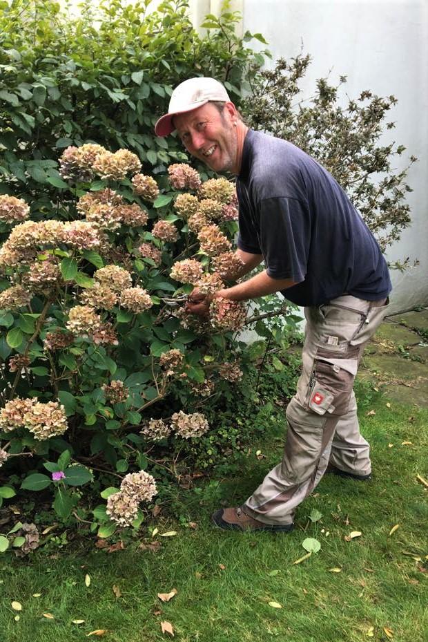 baumrausch - Gartenpflege