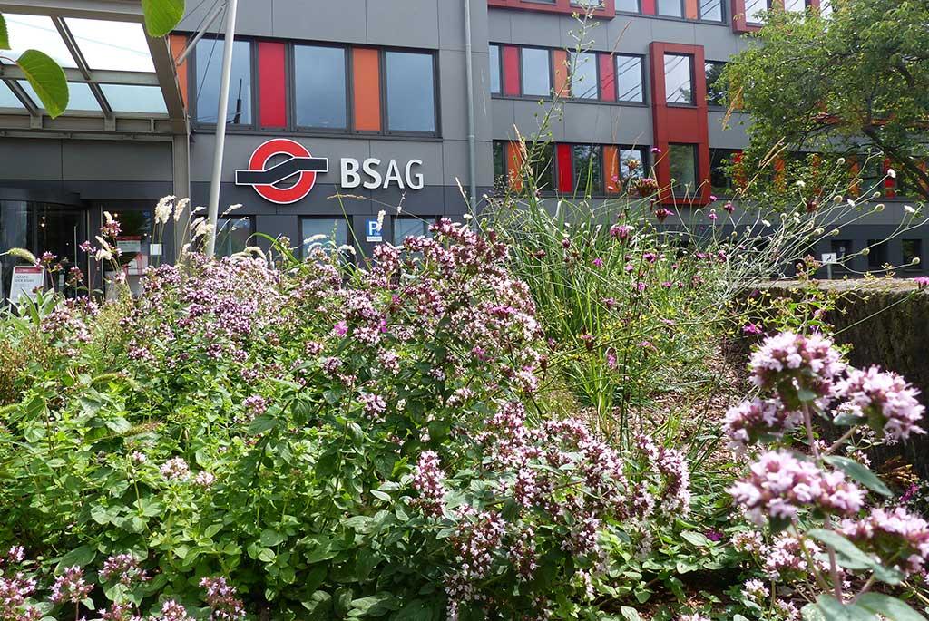 Landschaftsarchitektur baumrausch Bremen